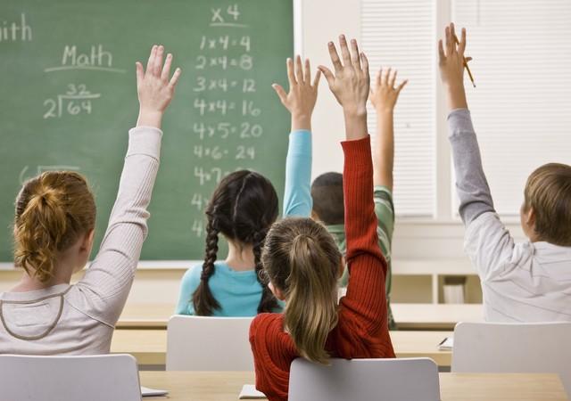Чем отличается СО от школы