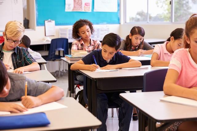 Система образования в США