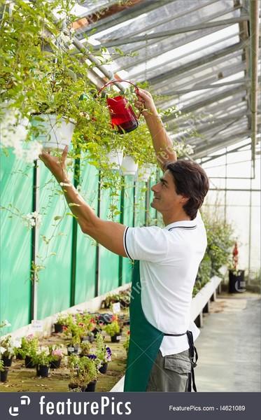 Как выбрать ускоренные, краткие курсы обучения флористов.