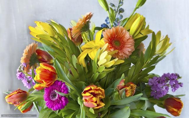 Как и где выбрать лицей флористов