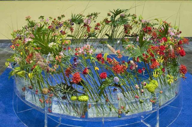 Где и что нужно для обучения в школе флористов