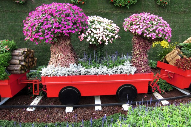 Как и где пойти в учебный центр (курсы) флористов