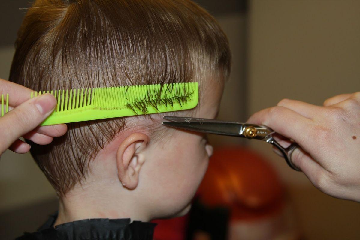 Как и где закончить парикмахерскую школу, академию, лицей  и получить государственный диплом