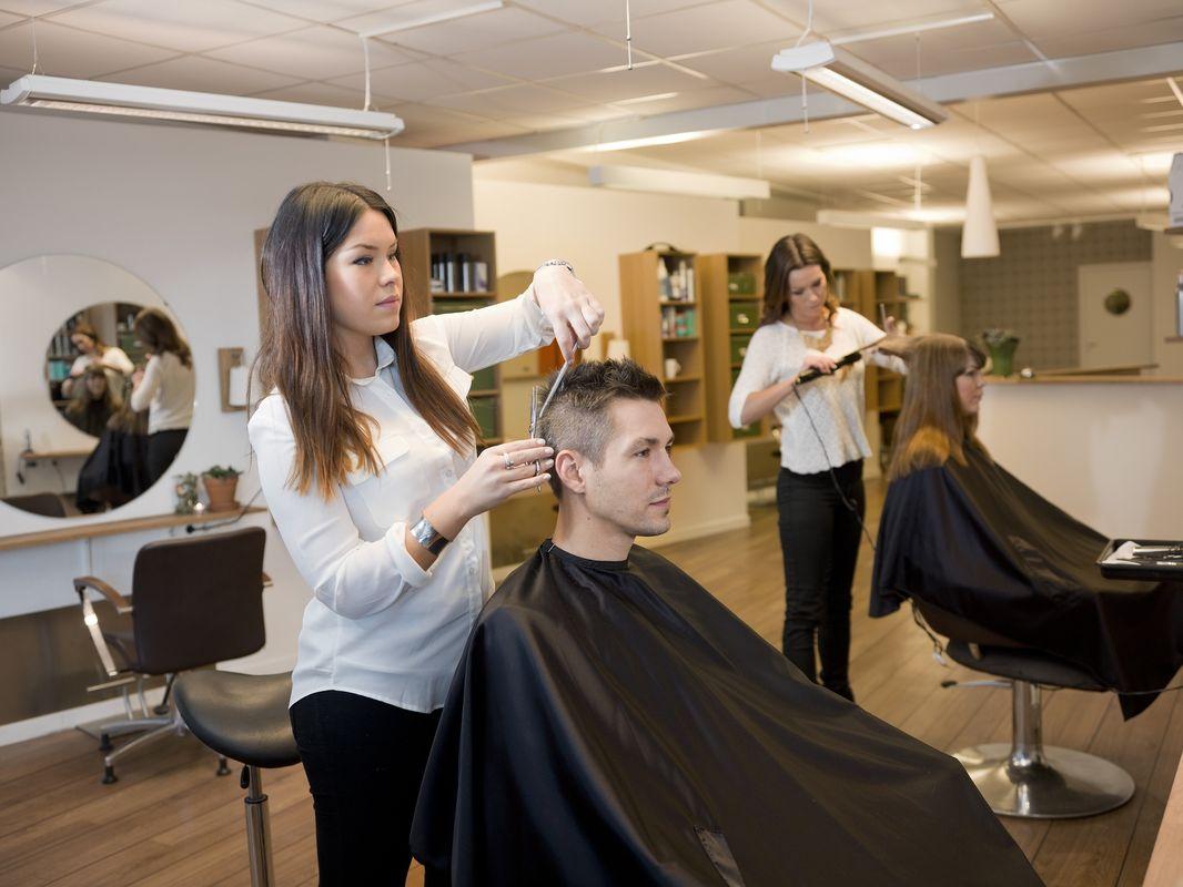 Как и где выбрать парикмахерский колледж  от биржи труда (службы занятости)